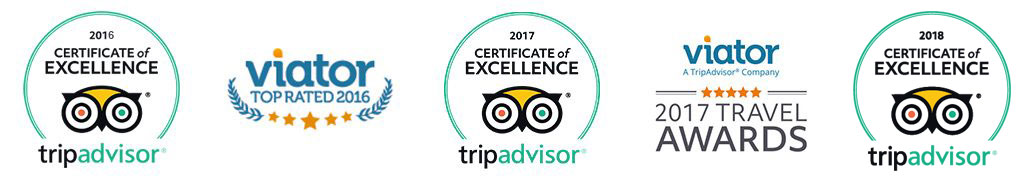 tripadvisor and viator awards